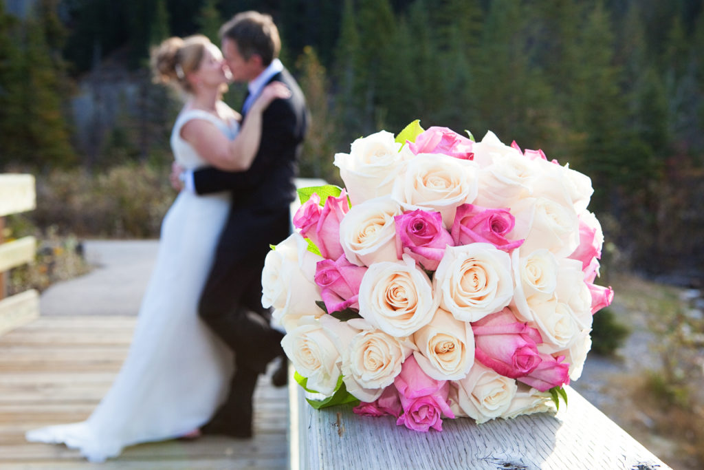 www.IamCalgary.ca I Am Calgary Delmar Wedding Kananaskis