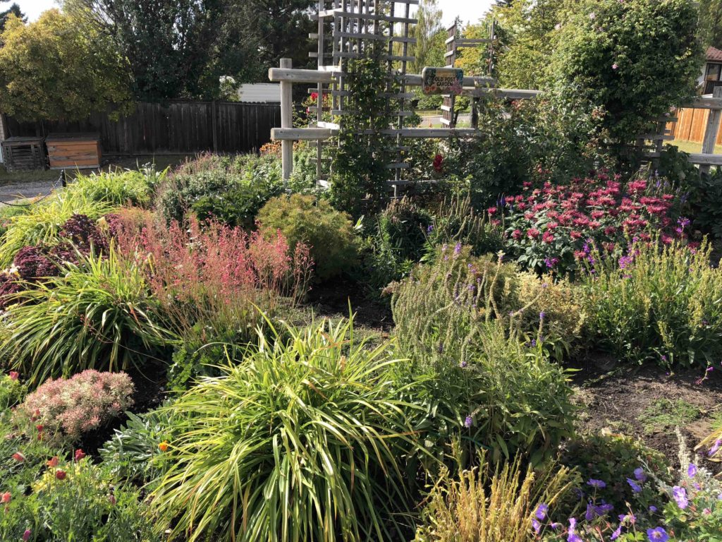 www.iamcalgary.ca IAmCalgary It's Spring and gardening Botanical Gardens of Silver Springs