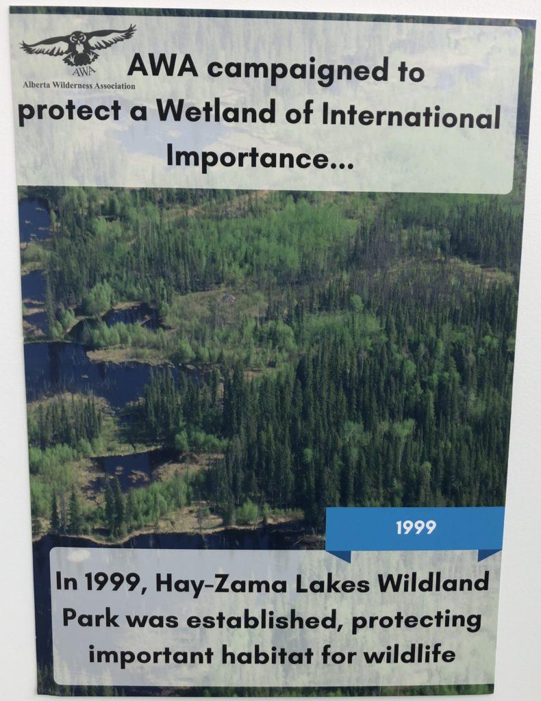 www.iamcalgary.ca I AM CALGARY Alberta Wilderness Association AWA Climb for Wild 20190427