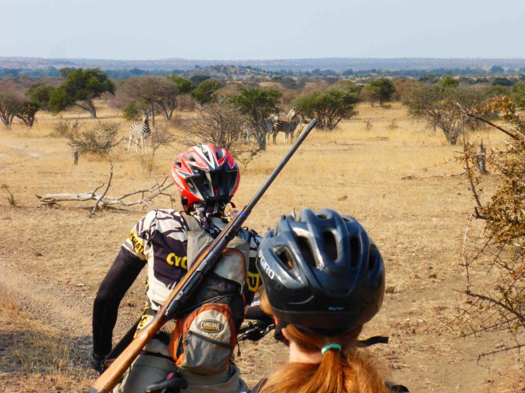 www.iamcalgary.ca IAmCalgary 2016 Cycle Mashatu Botswana Safari Christa and Mario Gun Zebra