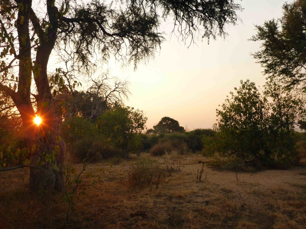 www.iamcalgary.ca IAmCalgary 2016 Cycle Mashatu Botswana Safari Shower Sunset