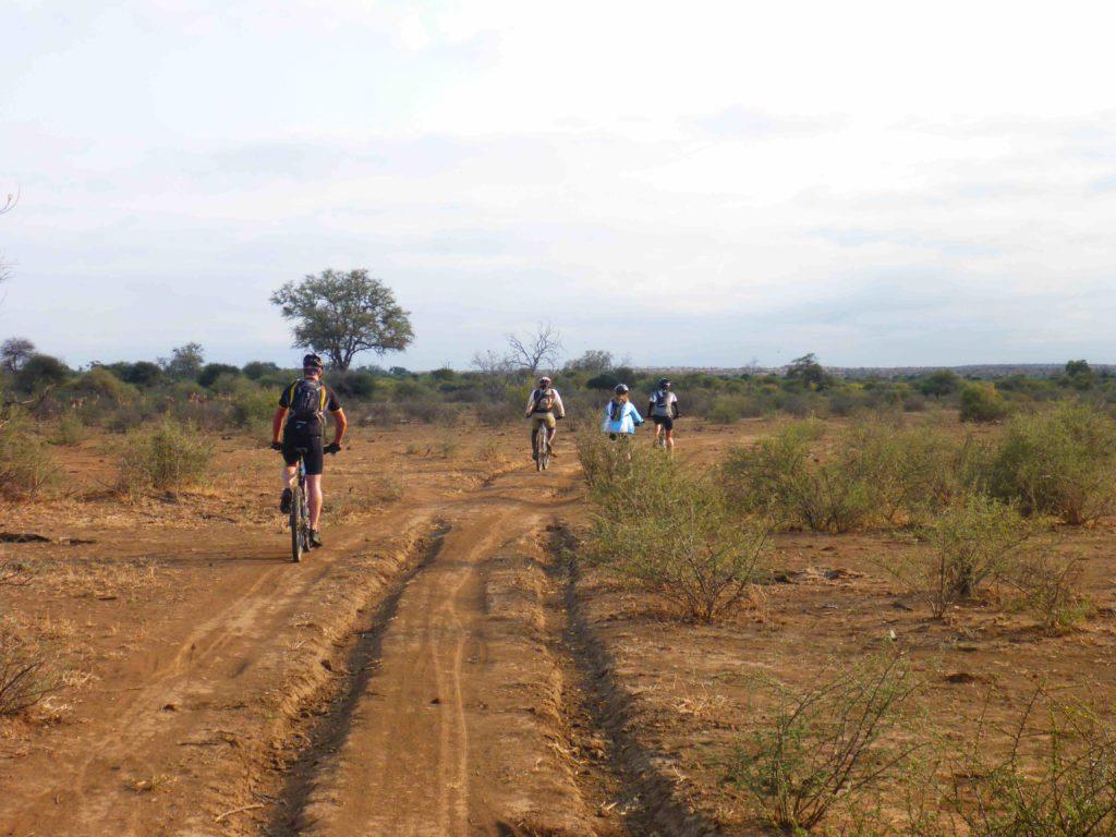 www.iamcalgary.ca IAmCalgary 2016 Cycle Mashatu Botswana Safari