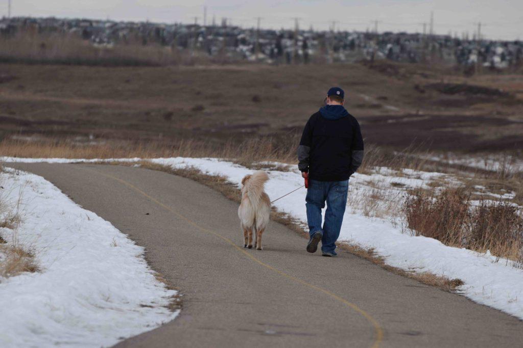 iamcalgary.ca Confluence Park Dog Walk Off-leash Winter